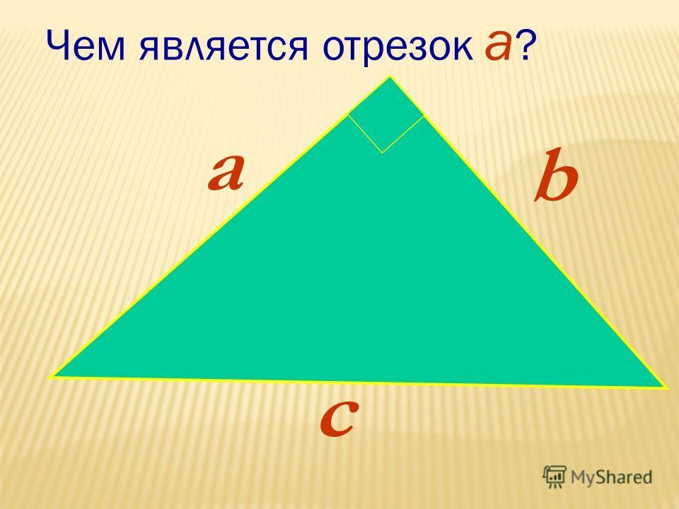 a b c Чем является отрезок a ?