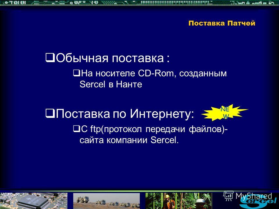Обычная поставка : На носителе CD-Rom, созданным Sercel в Нанте Поставка по Интернету: С ftp(протокол передачи файлов)- сайта компании Sercel. NE W