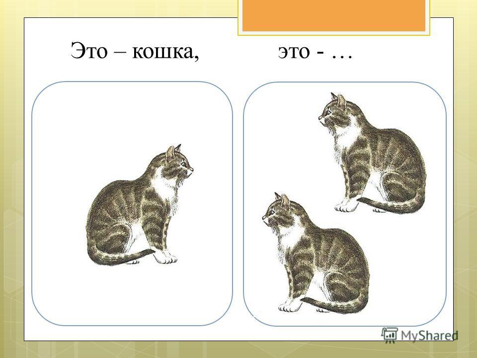Это – кошка, это - …