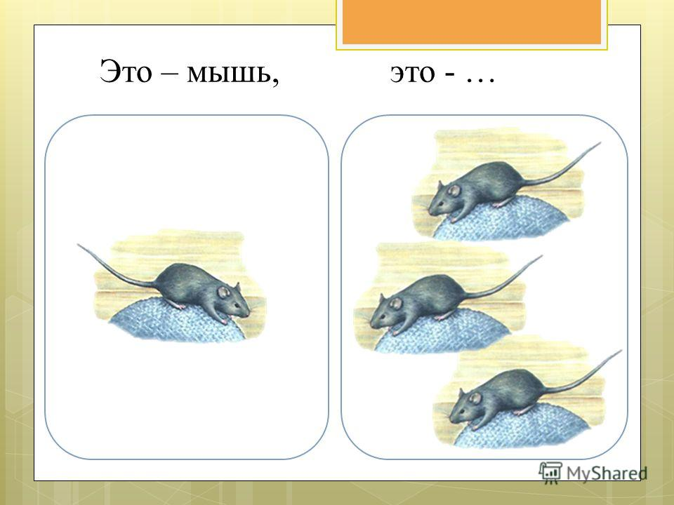Это – мышь, это - …