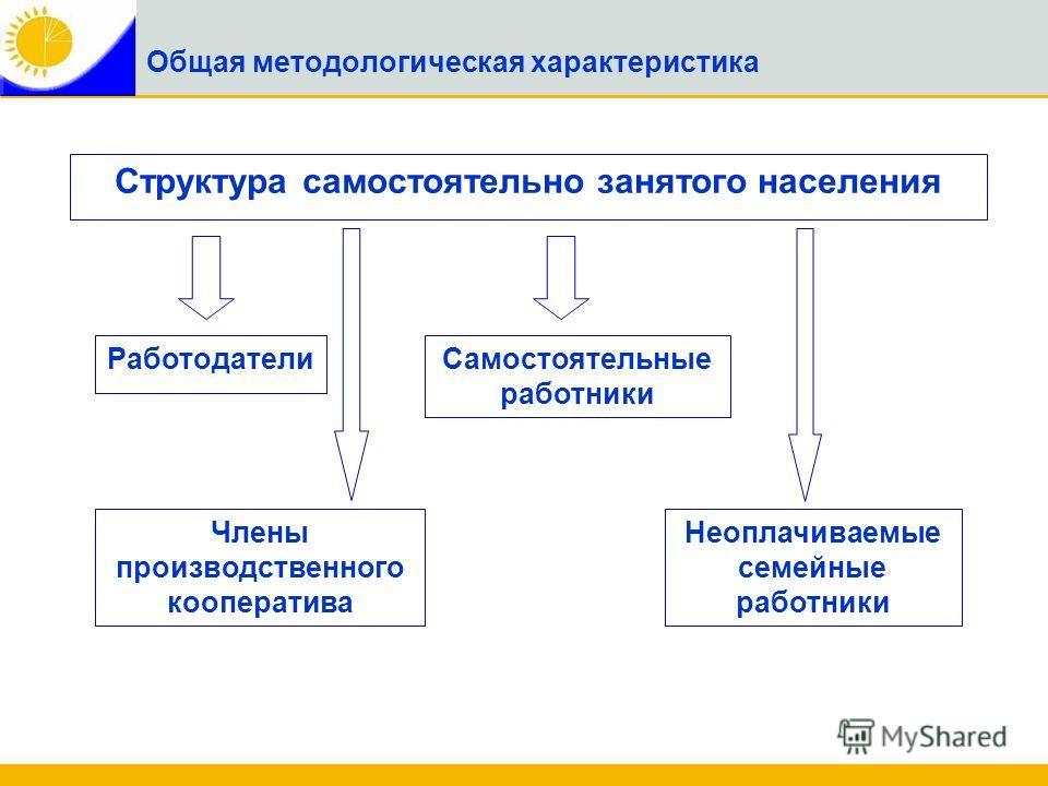 Структура самостоятельно занятого населения РаботодателиСамостоятельные работники Неоплачиваемые семейные работники Члены производственного кооператива Общая методологическая характеристика