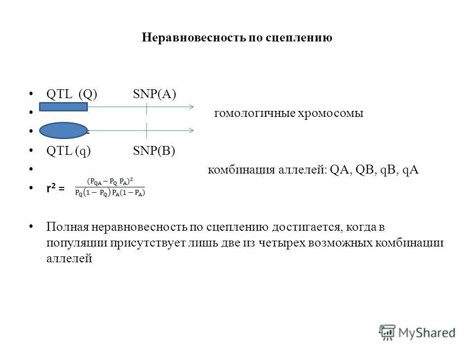 Неравновесность по сцеплению QTL (Q) SNP(A) гомологичные хромосомы r 2 = r 2 = QTL (q) SNP(B) комбинация аллелей: QA, QB, qB, qA r 2 = Полная неравновесность по сцеплению достигается, когда в популяции присутствует лишь две из четырех возможных комби