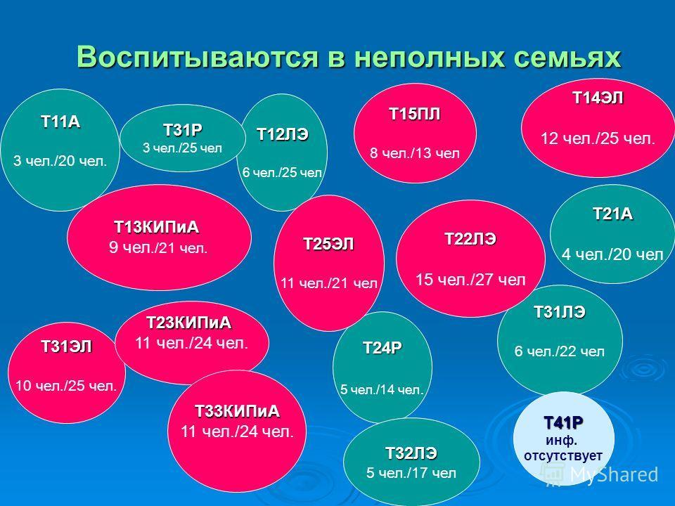 Воспитываются в неполных семьях Т11А 3 чел./20 чел. Т31ЭЛ 10 чел./25 чел. Т13КИПиА 9 чел./21 чел. Т14ЭЛ 12 чел./25 чел. Т23КИПиА 11 чел./24 чел. Т33КИПиА Т12ЛЭ 6 чел./25 чел Т15ПЛ 8 чел./13 чел Т31Р 3 чел./25 чел Т24Р 5 чел./14 чел. Т21А 4 чел./20 че