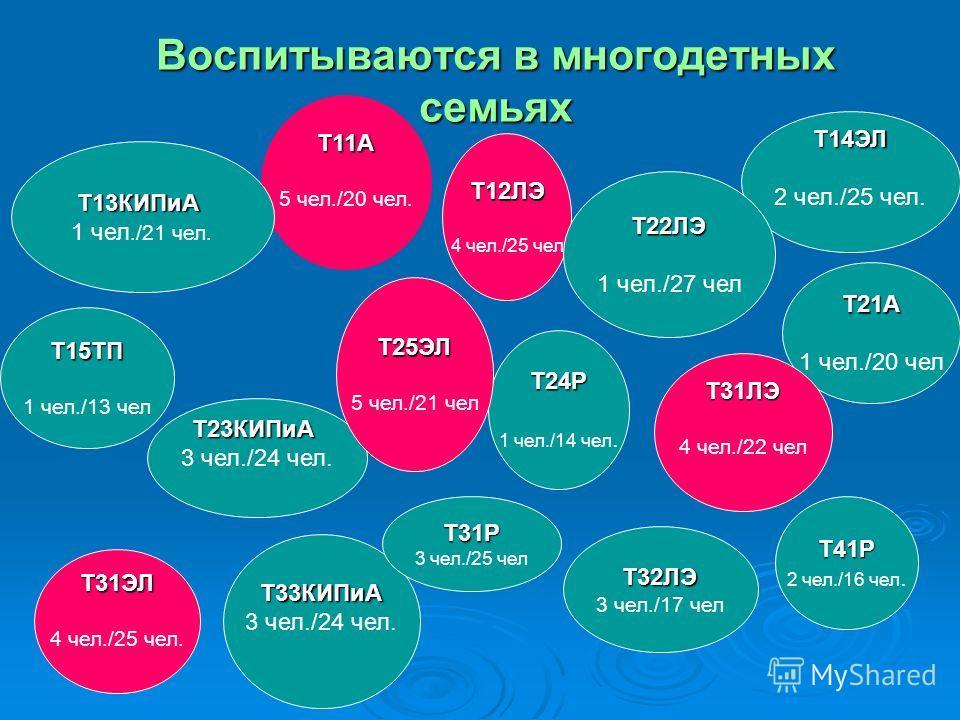 Воспитываются в многодетных семьях Т11А 5 чел./20 чел. Т31ЭЛ 4 чел./25 чел. Т13КИПиА 1 чел./21 чел. Т14ЭЛ 2 чел./25 чел. Т23КИПиА 3 чел./24 чел. Т33КИПиА Т12ЛЭ 4 чел./25 чел Т15ТП 1 чел./13 чел Т31Р 3 чел./25 чел Т24Р 1 чел./14 чел. Т21А 1 чел./20 че