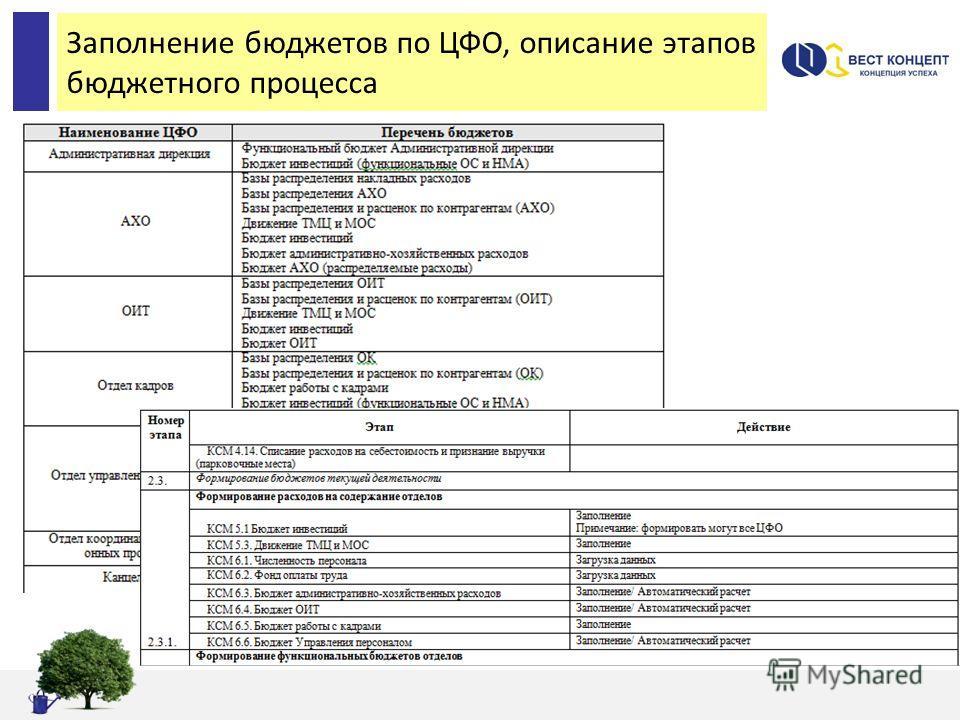 Заполнение бюджетов по ЦФО, описание этапов бюджетного процесса