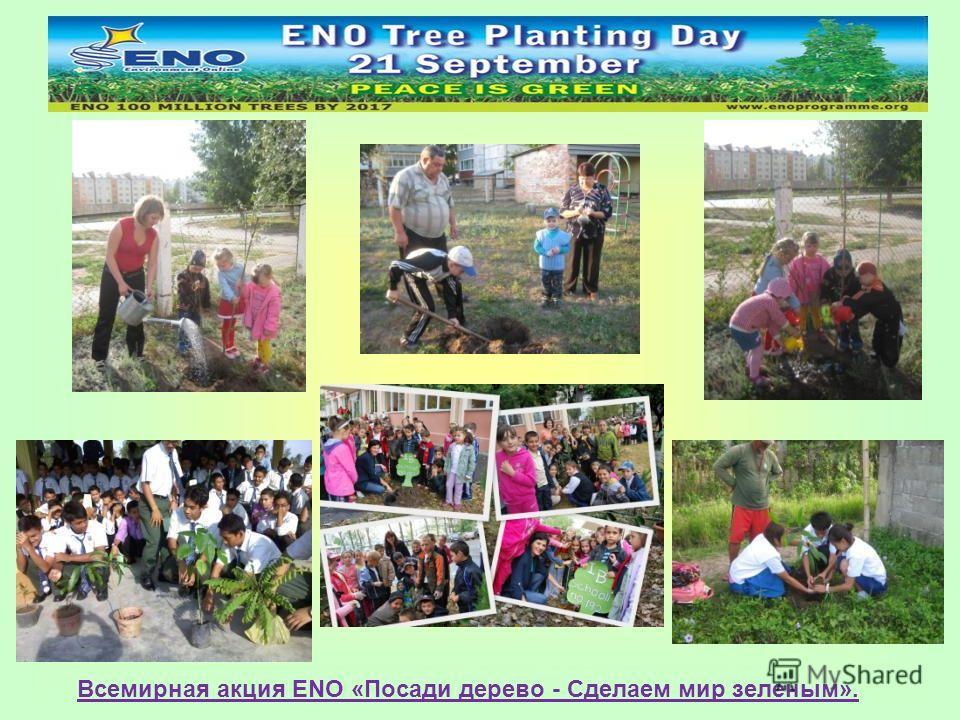Всемирная акция ENO «Посади дерево - Сделаем мир зеленым».