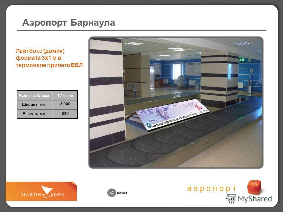 назад < Аэропорт Барнаула
