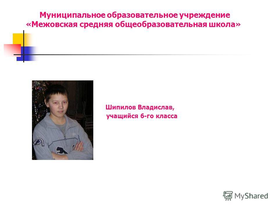 Муниципальное образовательное учреждение «Межовская средняя общеобразовательная школа» Шипилов Владислав, учащийся 6-го класса