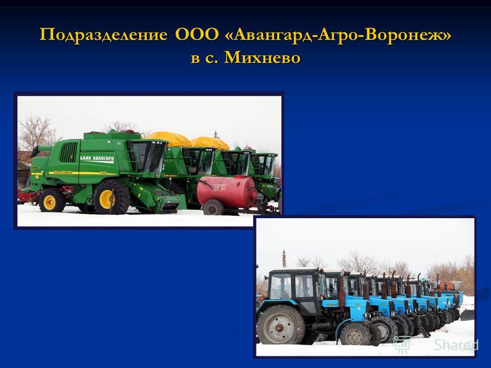 Подразделение ООО «Авангард-Агро-Воронеж» в с. Михнево