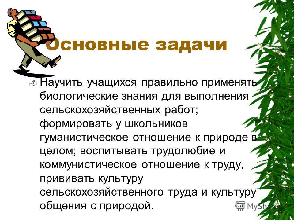 Ландшафтный дизайн территории школы. Автор: Мильман Иван Дмитриевич