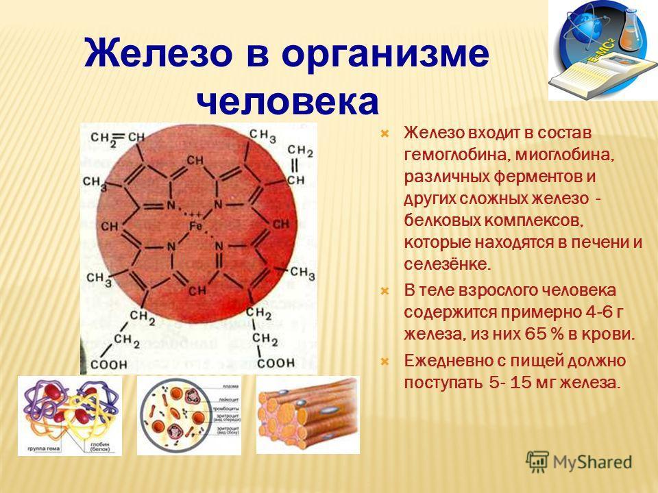 Fe - жизненно важный химический микроэлемент 2 млрд. людей страдают дефицитом железа