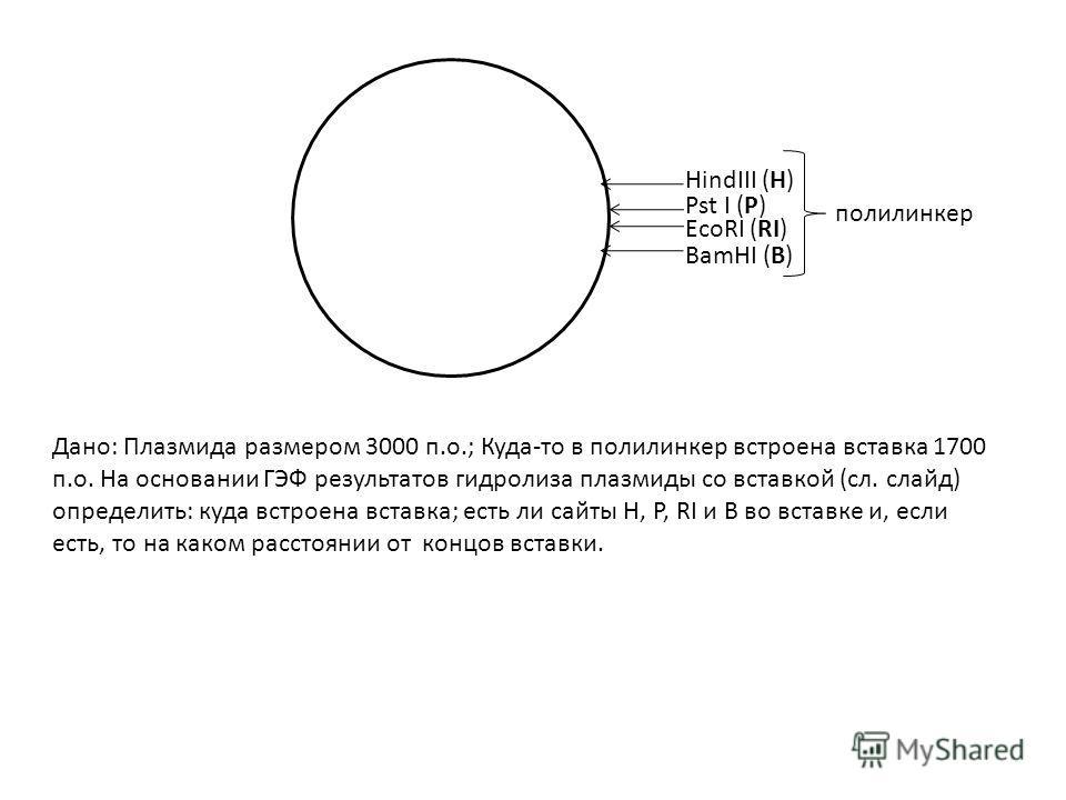 HindIII (H) Pst I (P) EcoRI (RI) BamHI (B) Дано: Плазмида размером 3000 п.о.; Куда-то в полилинкер встроена вставка 1700 п.о. На основании ГЭФ результатов гидролиза плазмиды со вставкой (сл. слайд) определить: куда встроена вставка; есть ли сайты H,