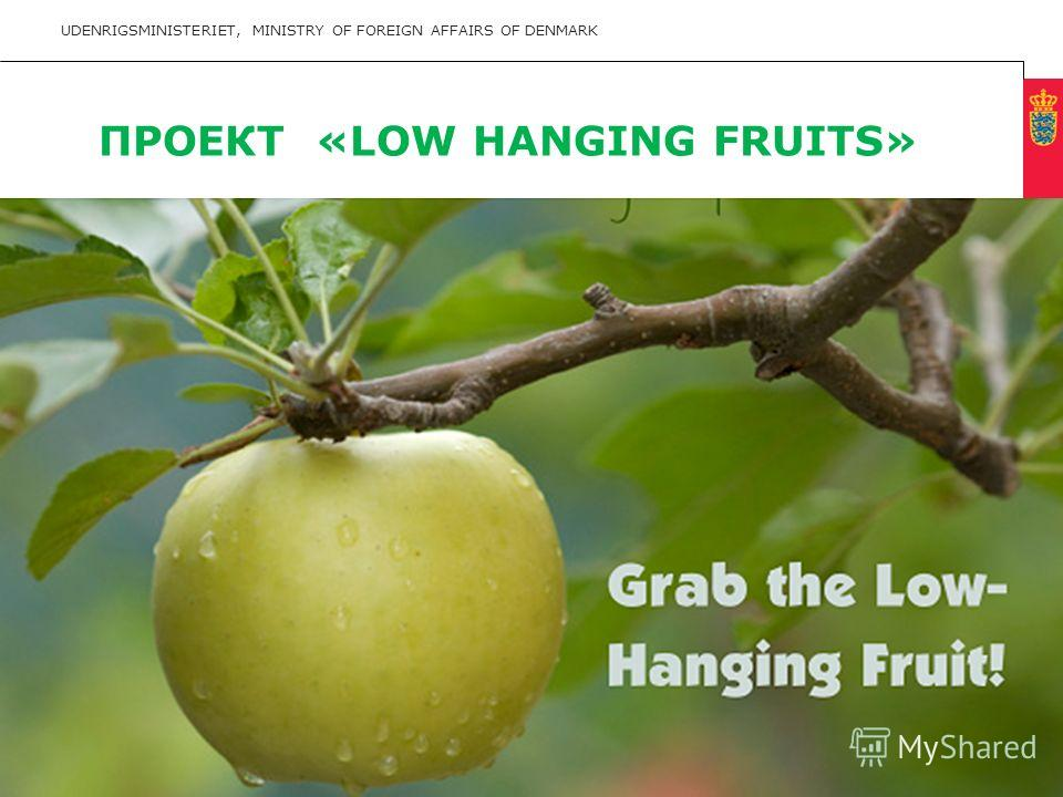 Minimum clear margin for text Fixed margin Keep heading in CAPITALS UDENRIGSMINISTERIET, MINISTRY OF FOREIGN AFFAIRS OF DENMARK 13 ПРОЕКТ «LOW HANGING FRUITS»