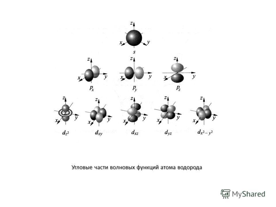 Угловые части волновых функций атома водорода