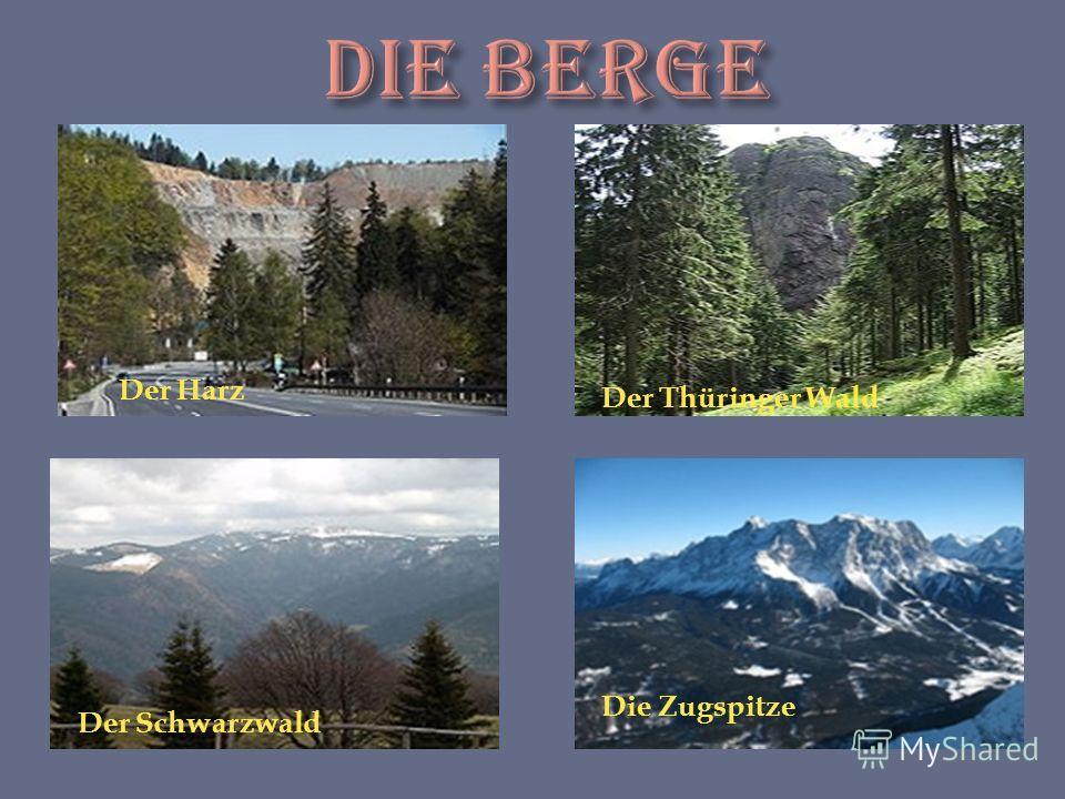 Der Harz Der Thüringer Wald Der Schwarzwald Die Zugspitze