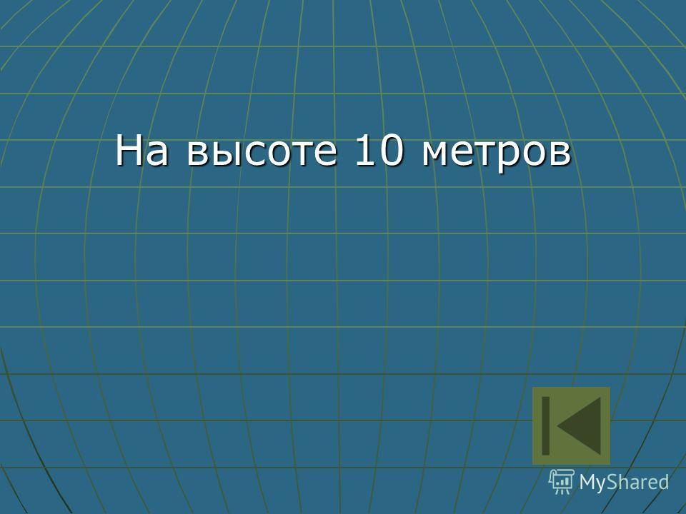 На высоте 10 метров