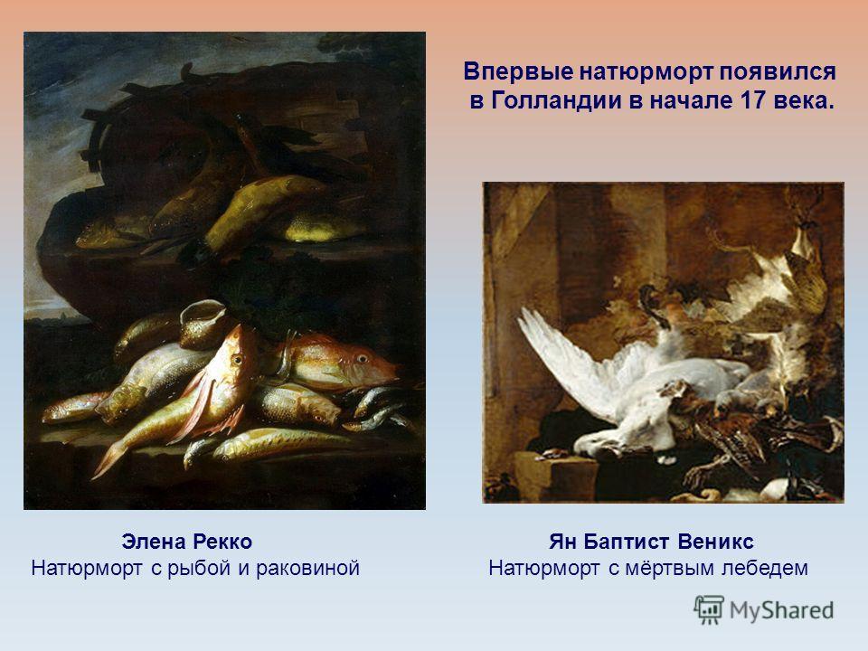 Элена Рекко Натюрморт с рыбой и раковиной Ян Баптист Веникс Натюрморт с мёртвым лебедем Впервые натюрморт появился в Голландии в начале 17 века.