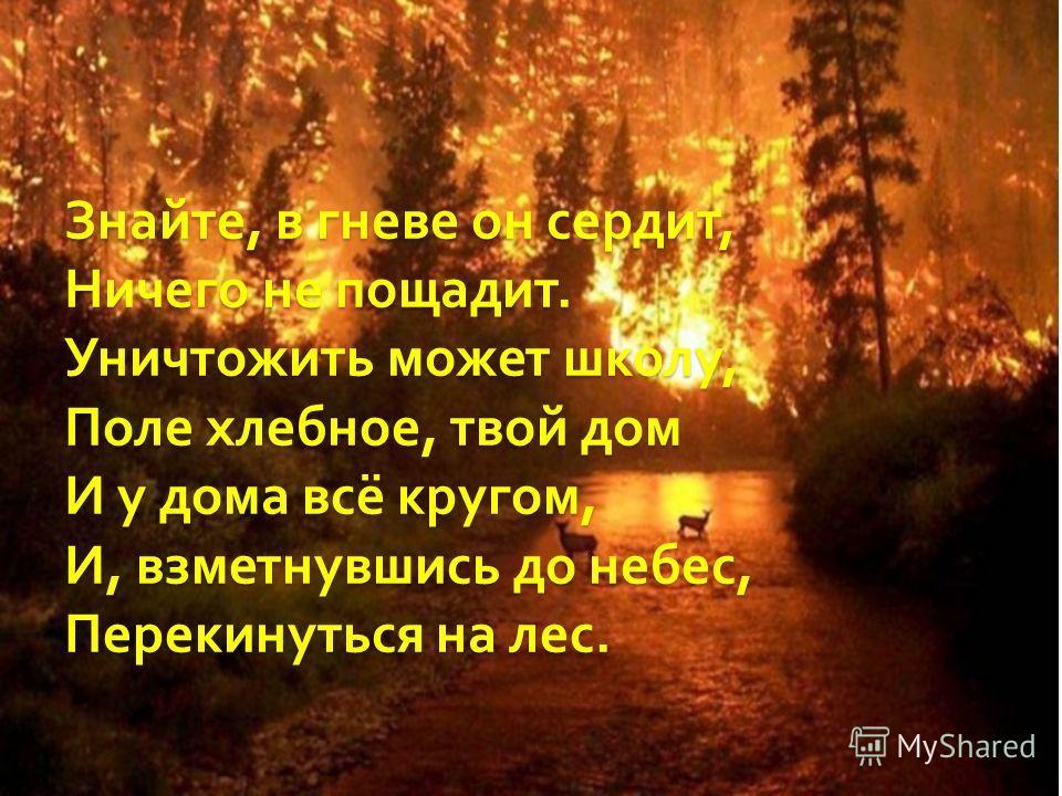 Знайте, в гневе он сердит, Ничего не пощадит. Уничтожить может школу, Поле хлебное, твой дом И у дома всё кругом, И, взметнувшись до небес, Перекинуться на лес.