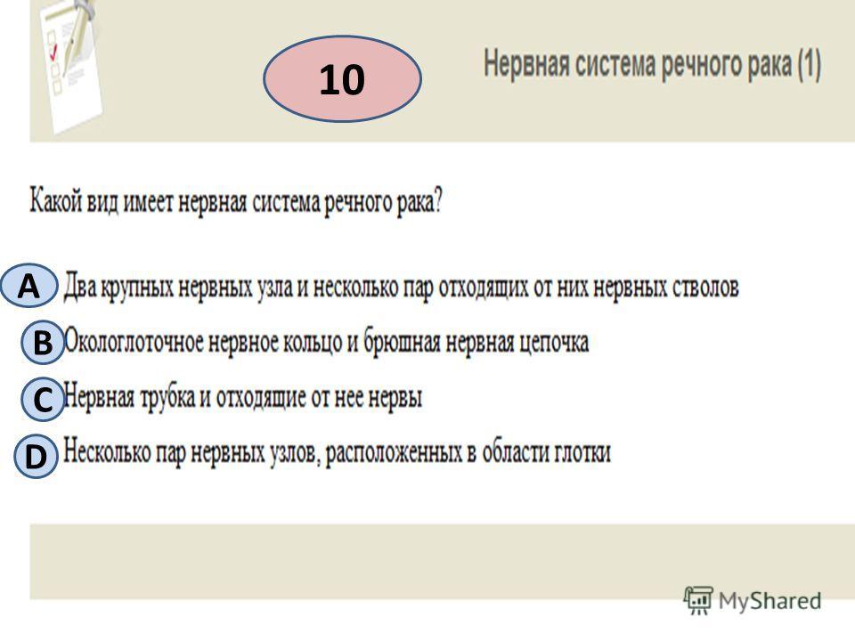 10 A B С D