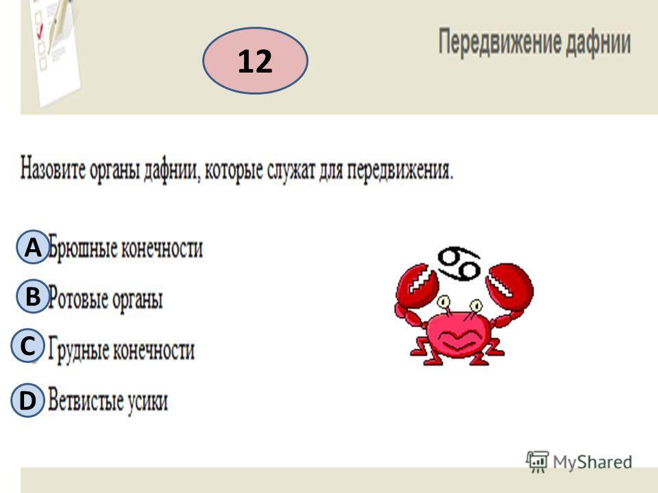 12 А B С D