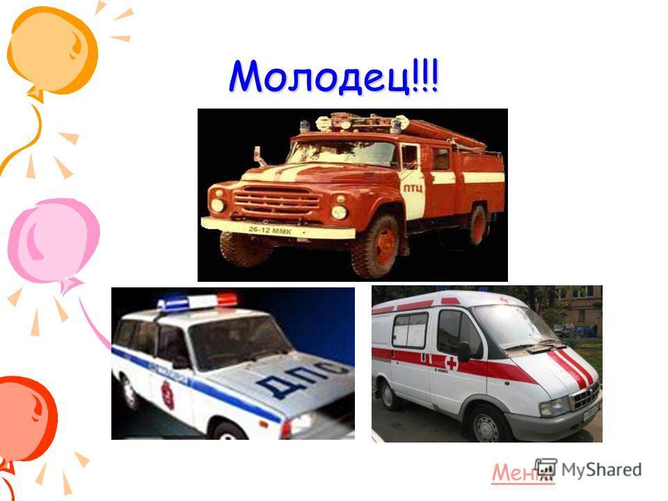 Вопрос теста Какие автомобили могут ехать на красный свет? 3. Пожарная, милицейская, скорая помощь, спецмашины 1. Папина и мамина 2. Такси