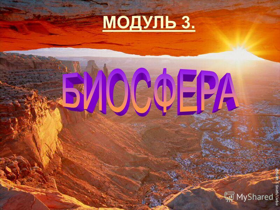 МОДУЛЬ 3.