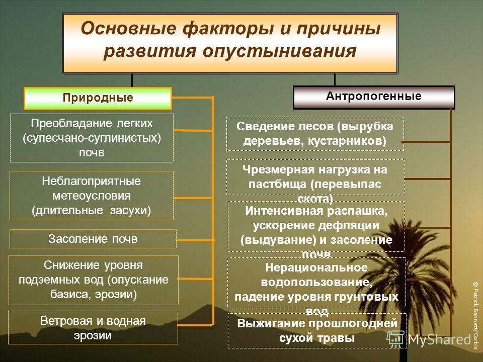Природные Антропогенные Неблагоприятные метеоусловия (длительные засухи) Сведение лесов (вырубка деревьев, кустарников) Засоление почв Чрезмерная нагрузка на пастбища (перевыпас скота) Преобладание легких (супесчано-суглинистых) почв Интенсивная расп