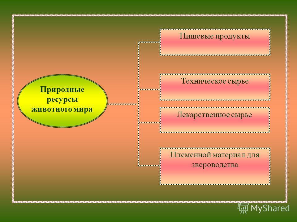 Пищевые продукты Техническое сырье Лекарственное сырье Племенной материал для звероводства Природные ресурсы животного мира