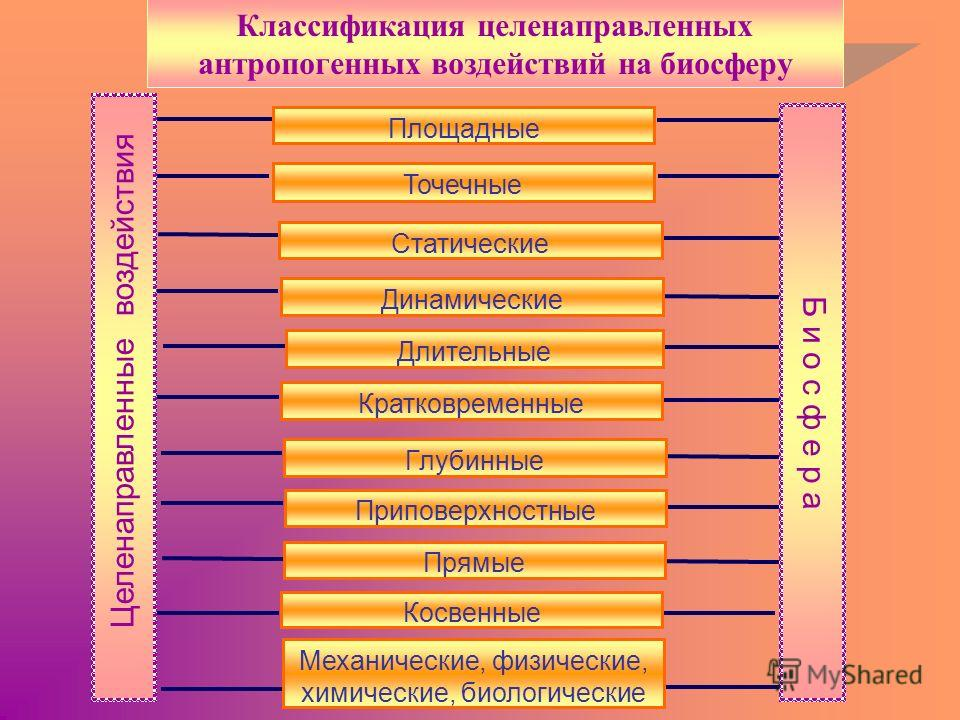 Б и о с ф е р а Целенаправленные воздействия Площадные Точечные Статические Динамические Длительные Кратковременные Глубинные Приповерхностные Прямые Косвенные Механические, физические, химические, биологические Классификация целенаправленных антропо