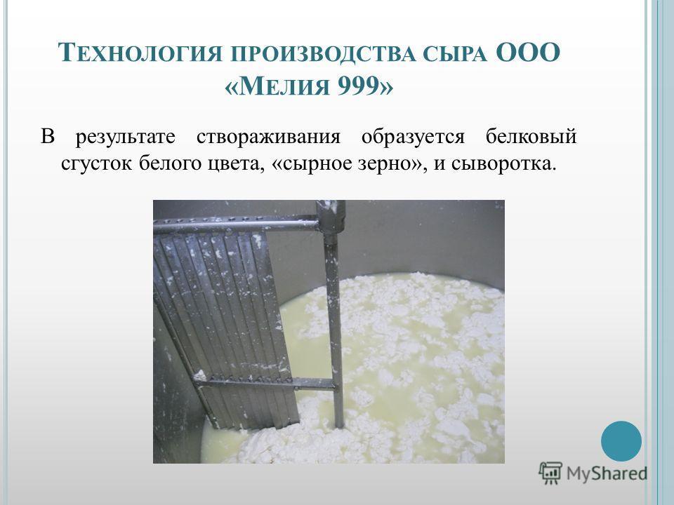 Т ЕХНОЛОГИЯ ПРОИЗВОДСТВА СЫРА ООО «М ЕЛИЯ 999» В результате створаживания образуется белковый сгусток белого цвета, «сырное зерно», и сыворотка.
