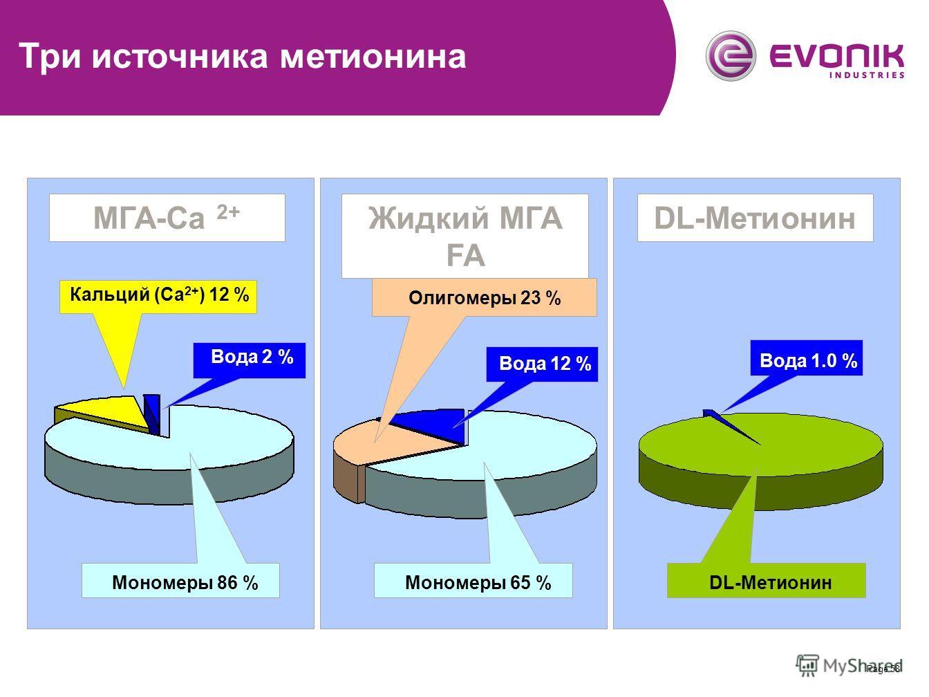 Page 58 MHA-Ca 2+ -Salt - theoretical composition Кальций (Ca 2+ ) 12 % Мономеры 86 % Вода 2 % MГА-Ca 2+ DL-Метионин Вода 1.0 % DL-Метионин Олигомеры 23 % Вода 12 % Жидкий МГА FA Мономеры 65 % Три источника метионина