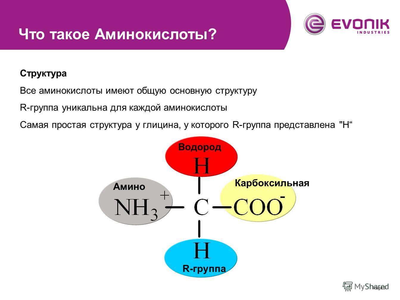Page 6 Структура Все аминокислоты имеют общую основную структуру R-группа уникальна для каждой аминокислоты Самая простая структура у глицина, у которого R-группа представлена H Амино Водород Карбоксильная R-группа Что такое Аминокислоты?