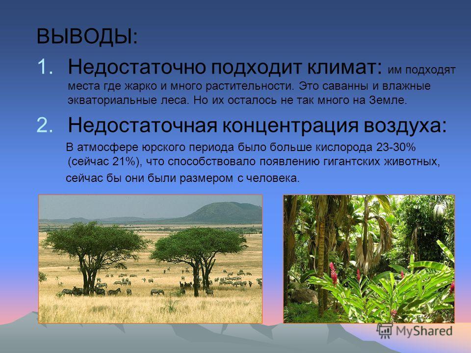 ВЫВОДЫ: 1.Недостаточно подходит климат: им подходят места где жарко и много растительности. Это саванны и влажные экваториальные леса. Но их осталось не так много на Земле. 2.Недостаточная концентрация воздуха: В атмосфере юрского периода было больше