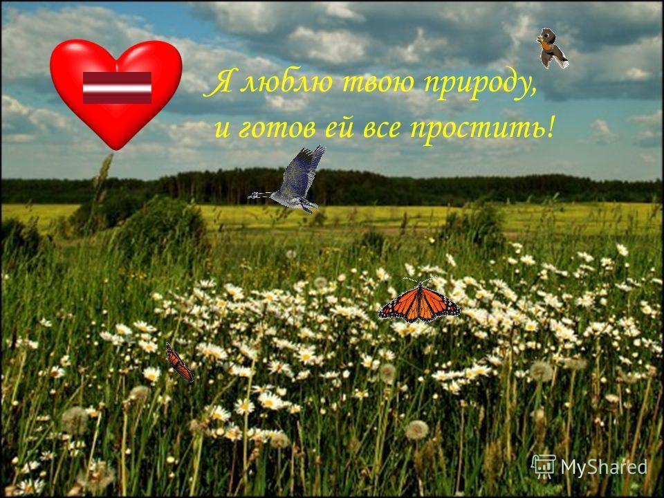 Я люблю твою природу, и готов ей все простить!