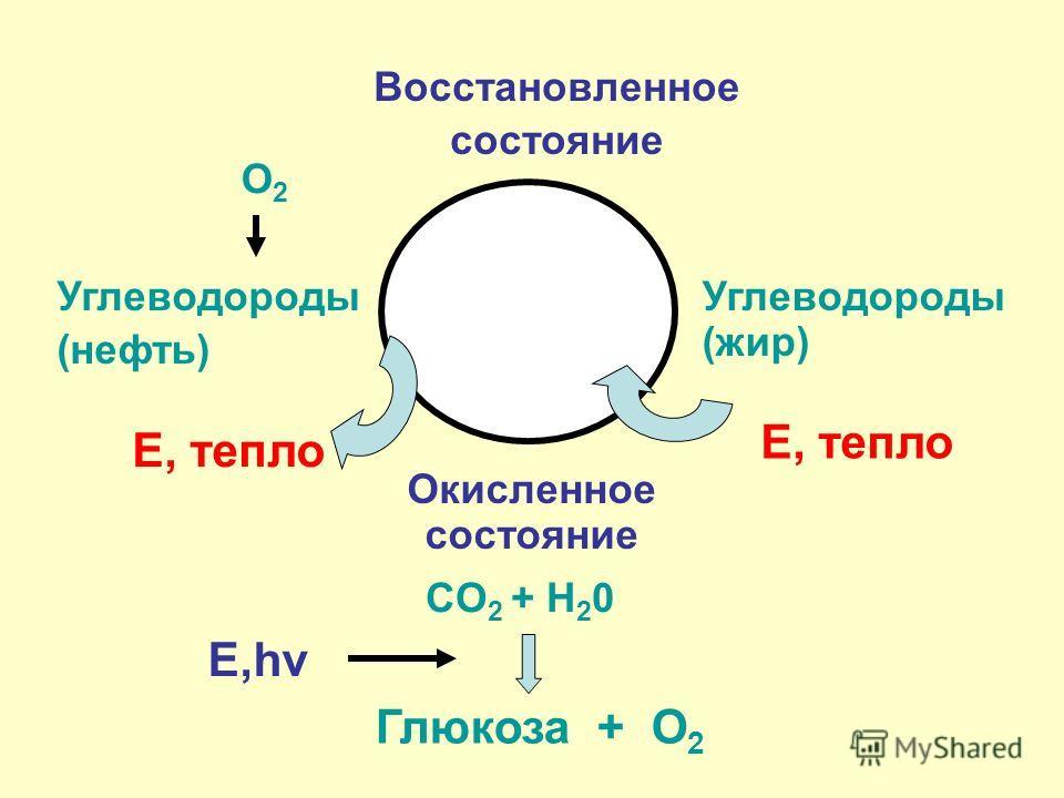Восстановленное состояние Углеводороды (нефть) СO 2 + H 2 0 Окисленное состояние Углеводороды (жир) Глюкоза + O 2 Е, тепло O2O2 Е,hv