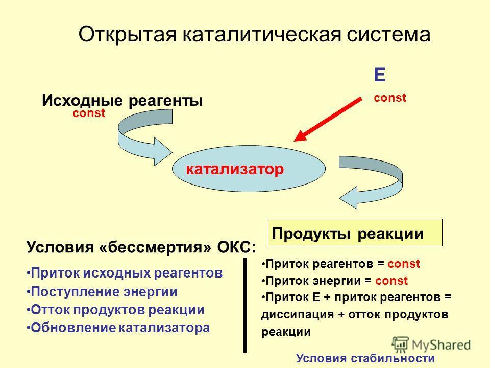Открытая каталитическая система Е Исходные реагенты катализатор Продукты реакции Условия «бессмертия» ОКС: Приток исходных реагентов Поступление энергии Отток продуктов реакции Обновление катализатора const Приток реагентов = const Приток энергии = c