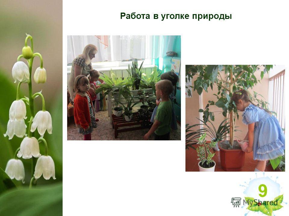 знакомство с природой детей дошкольного возраста