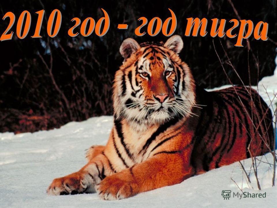 Пусть 2010 год принесет каждому Мир, Счастье, Любовь и согласие