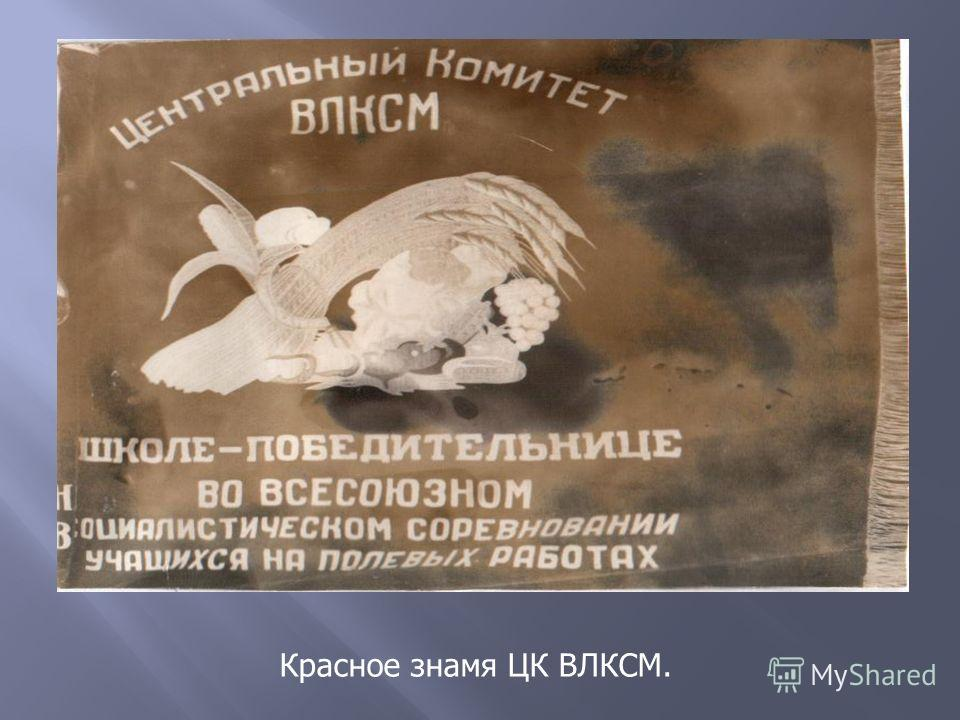 Красное знамя ЦК ВЛКСМ.