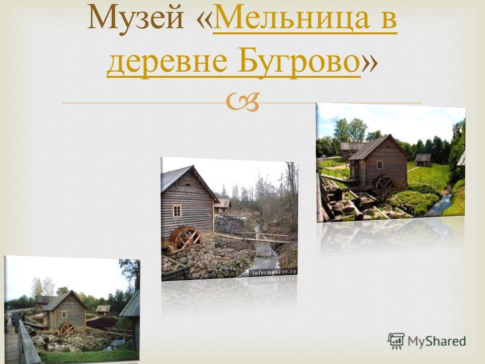 Музей « Мельница в деревне Бугрово » Мельница в деревне Бугрово