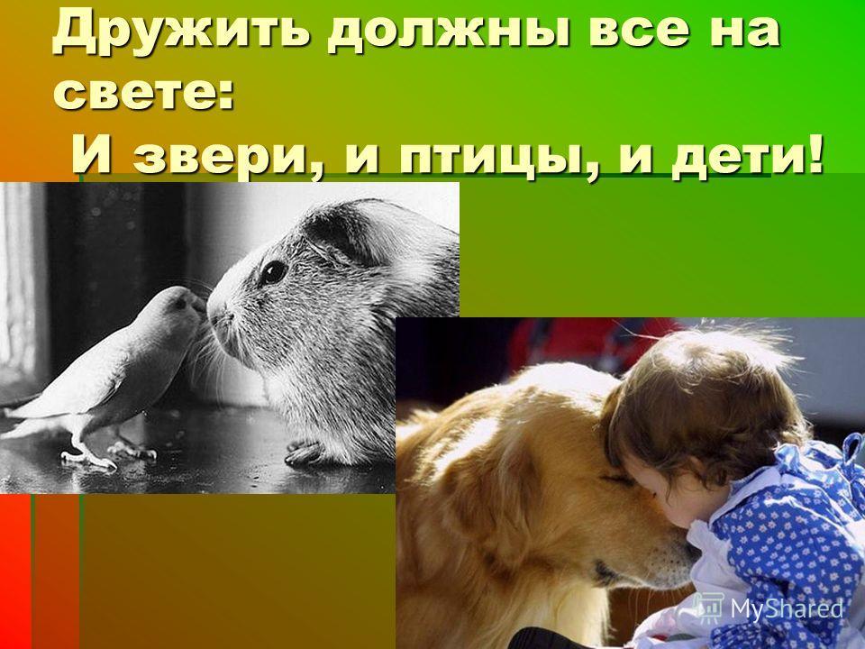 Дружить должны все на свете: И звери, и птицы, и дети!