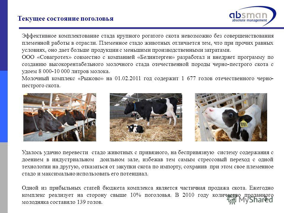 3 Эффективное комплектование стада крупного рогатого скота невозможно без совершенствования племенной работы в отрасли. Племенное стадо животных отличается тем, что при прочих равных условиях, оно дает больше продукции с меньшими производственными за