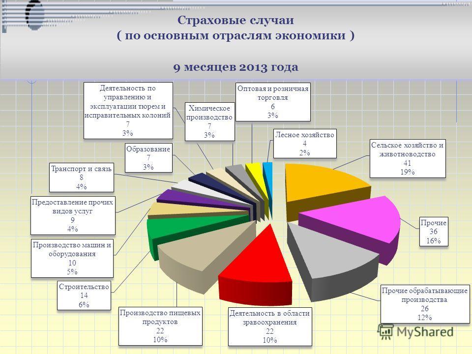 Страховые случаи ( по основным отраслям экономики ) 9 месяцев 2013 года