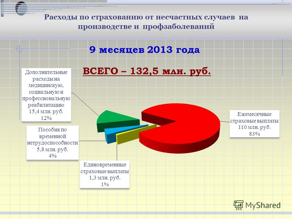ВСЕГО – 132,5 млн. руб. 9 месяцев 2013 года Расходы по страхованию от несчастных случаев на производстве и профзаболеваний