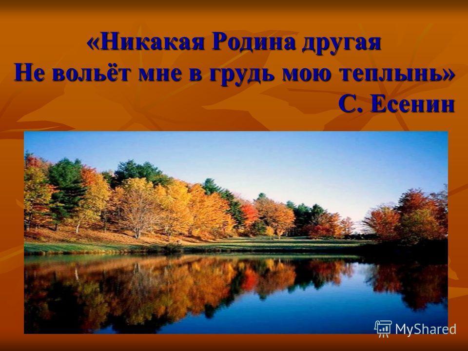 «Никакая Родина другая Не вольёт мне в грудь мою теплынь» С. Есенин