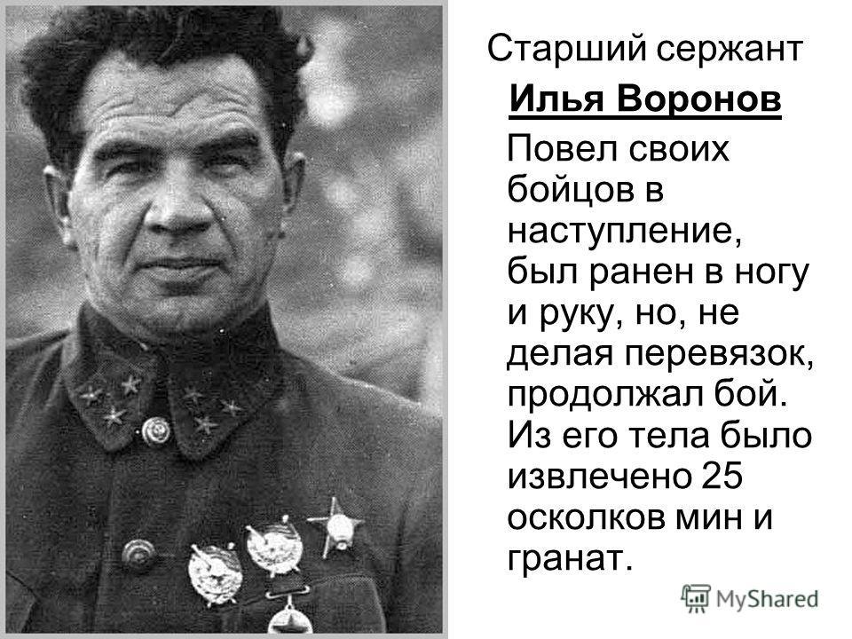 Старший сержант Илья Воронов Повел своих бойцов в наступление, был ранен в ногу и руку, но, не делая перевязок, продолжал бой. Из его тела было извлечено 25 осколков мин и гранат.