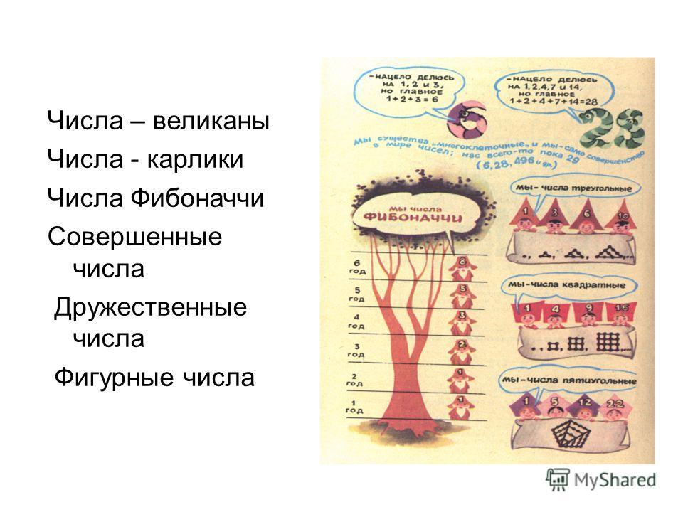 Числа – великаны Числа - карлики Числа Фибоначчи Совершенные числа Дружественные числа Фигурные числа