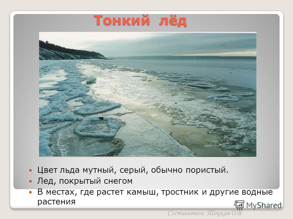 Тонкий лёд Составитель: Тоцкая О.В. Цвет льда мутный, серый, обычно пористый. Лед, покрытый снегом В местах, где растет камыш, тростник и другие водные растения