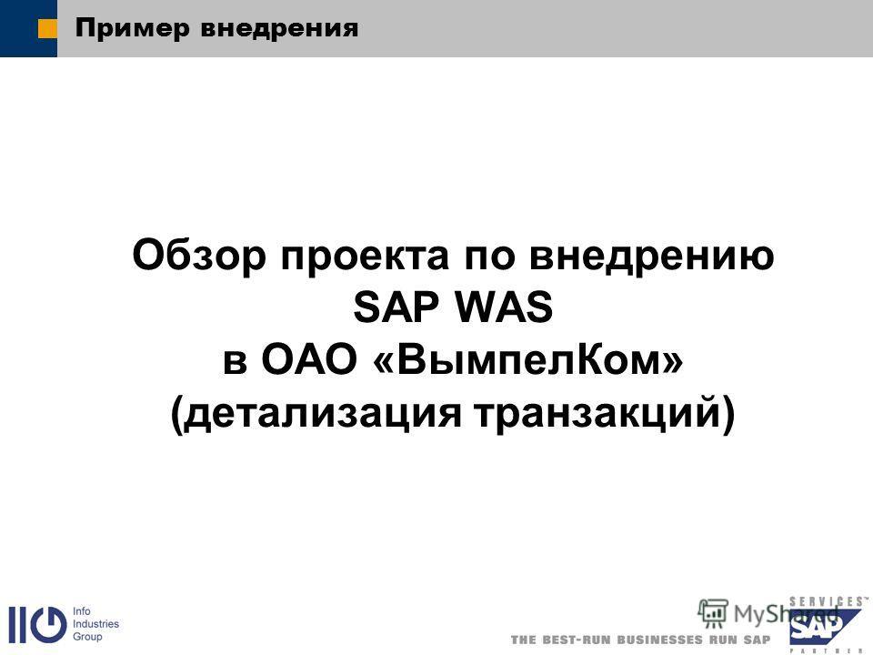 Пример внедрения Обзор проекта по внедрению SAP WAS в ОАО «ВымпелКом» (детализация транзакций)