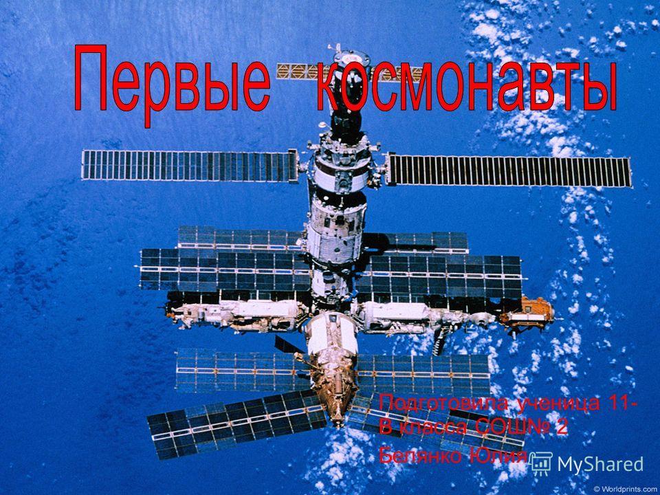 Подготовила ученица 11- В класса СОШ 2 Белянко Юлия